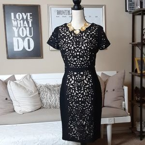 Maeve Black and Tan Cut Out Dress  (4)